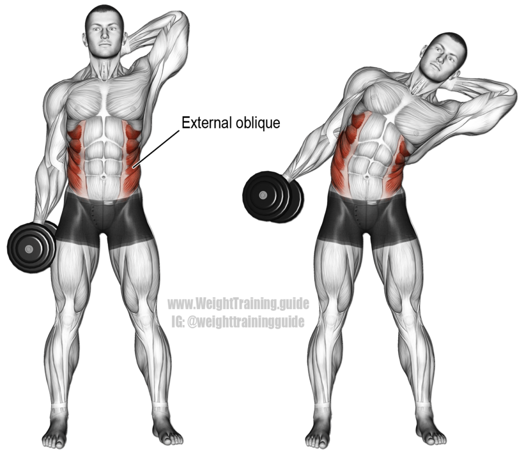 oblique crunch with dumbbell